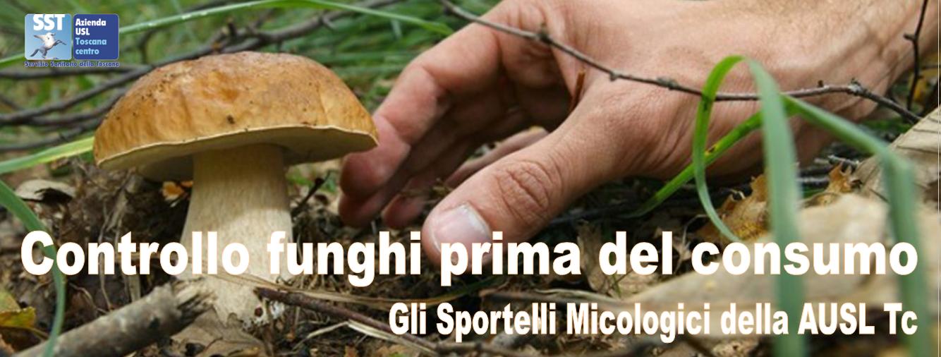 Controllo funghi